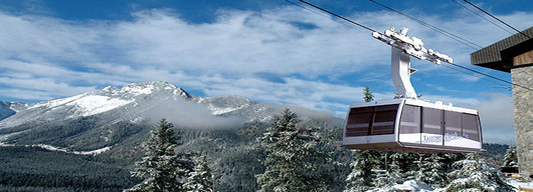 sikkim-tour-packages-530x270